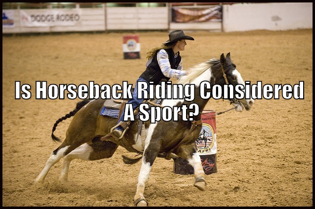 barrel racing sport